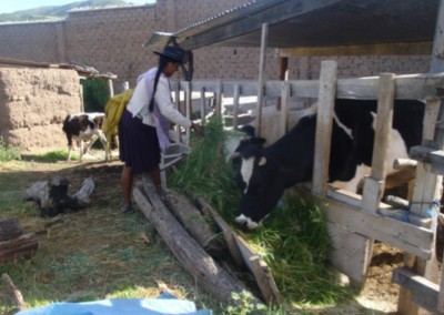 Yotala, (Bolivia)